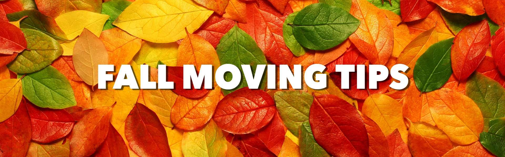 Fall moving tips image
